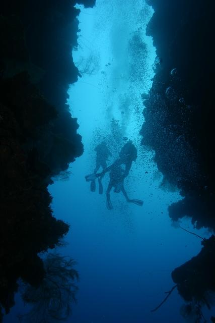 Caves of Roatan Islands in Honduras