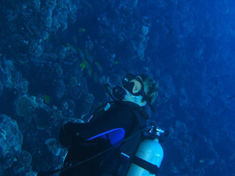Fish rain molokai for Molokai fish and dive