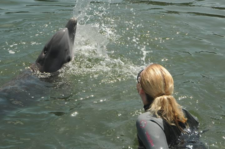 Dolphin Spit Contest :p 2011 Marathon, FL Dolphin Research Center