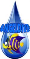 Angel Dive Vietnam