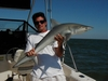 My dad and a shark in the Gulf of Mexico.