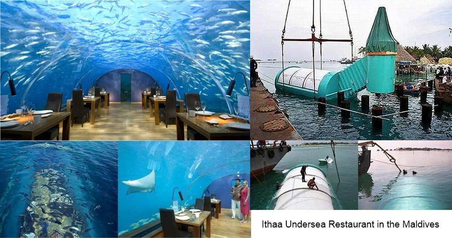 Ithaa undersea restaurant in the maldives for Ithaa restaurant maldives