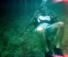 Dania Beach Jax Dive