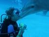 Open Ocean Dolphin Dive-Bahamas 2006  Best kiss I ever got!