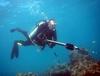 Spearfishing in Key West - pontiuspylate