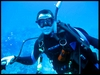 Diving in Belize!