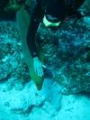 Cozumel - Jan 2008 - good girl...