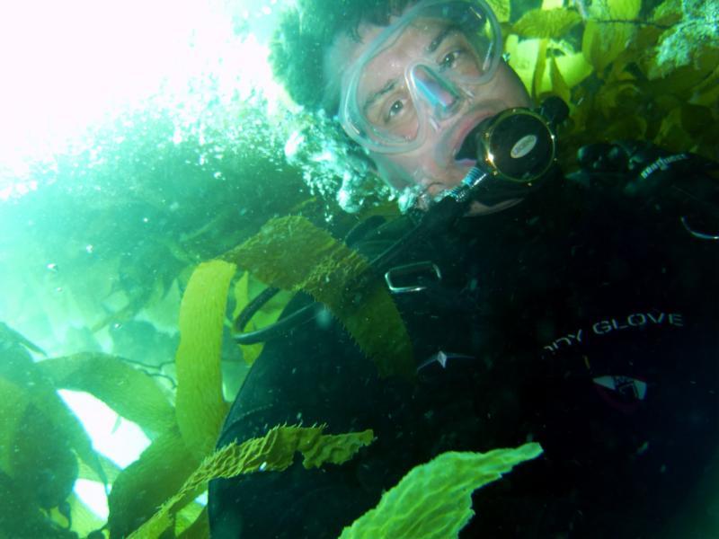 Love kelp diving!