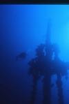 Silhouette Diver
