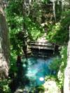 Paradise Springs Entry