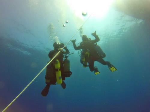 Sailfish diving and PADI IDC prep moving into easter fun