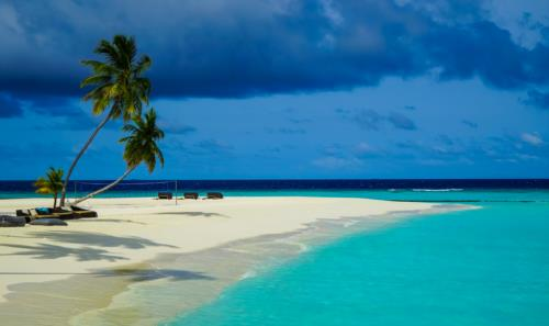 Maldives – A Great Alternative to your Canceled Red Sea Dive Trip