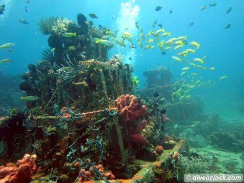 Dive destination: Amed, Bali!