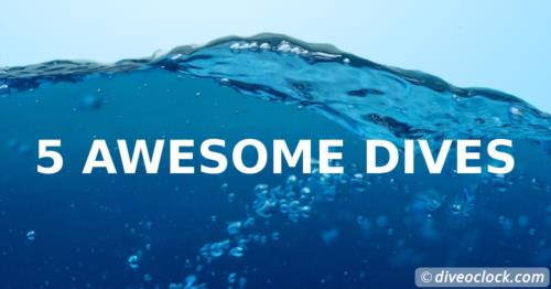 5 Awesome Dive & Snorkel trips around the world!
