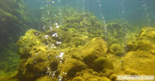 Volcanic Bubbles at Champagne Reef in Dominica!