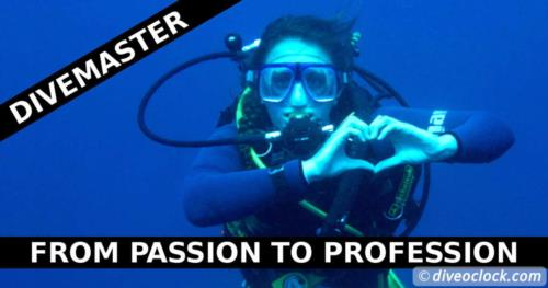 So you Wanna Become a Divemaster?