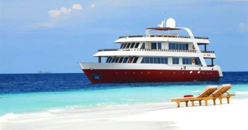 Liveaboard Special Deals and Last Minute Discounts