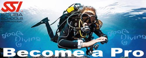 Do you want to change your life? Divemaster Internship