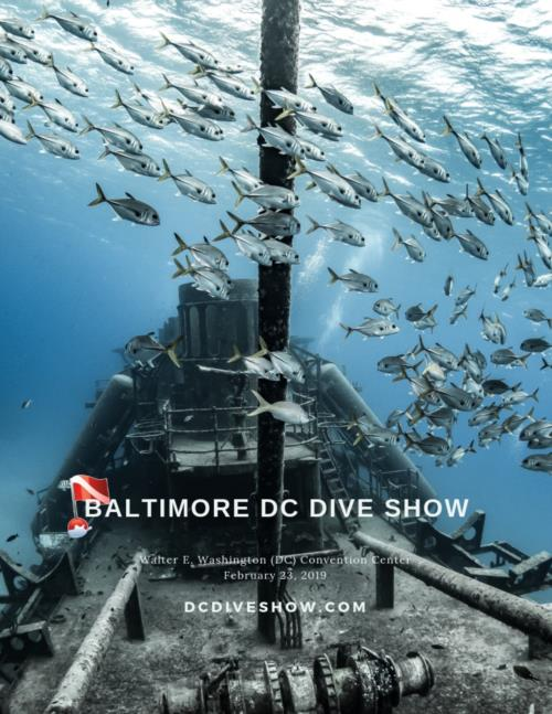 DCDiveShow Lineup