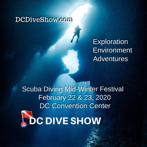 DC Dive Show Workshop Updates