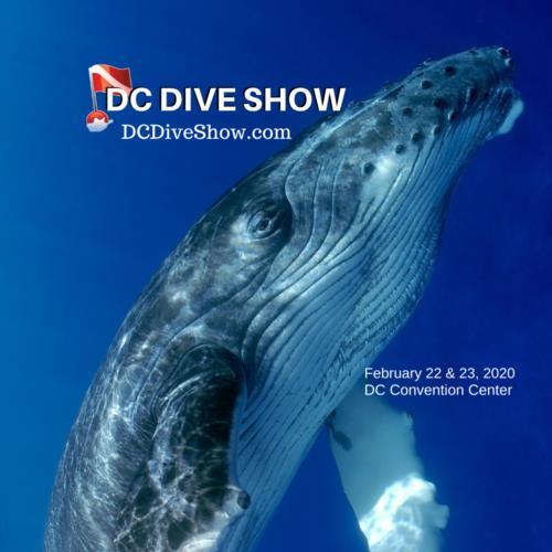 DC Dive Show Offers DiveBuddys.com Discount
