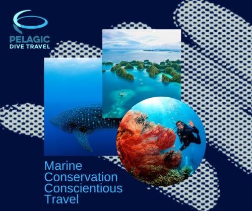 Marine Conservation Based Travel