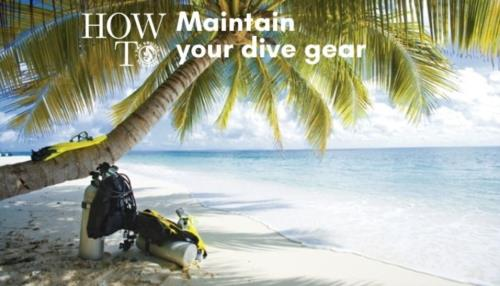 Advice to keep your diving gear in top shape