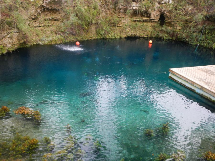 Blue Grotto Dive Resort - Smoky Mountain Divers at Blue Grotto