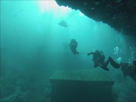 Blue Grotto Dive Resort - Diver Down