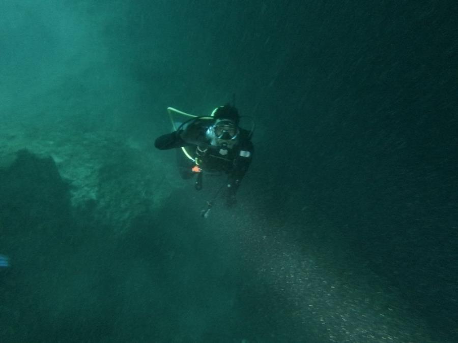 Blue Grotto Dive Resort - Blue grotto