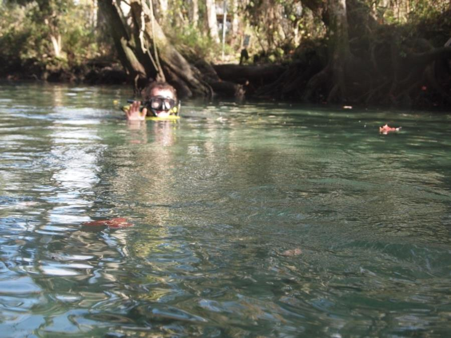 Three Sisters Spring - Channel from canal to springs