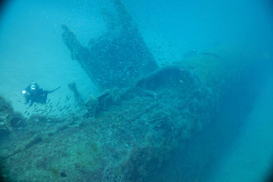 U-352 - U-352