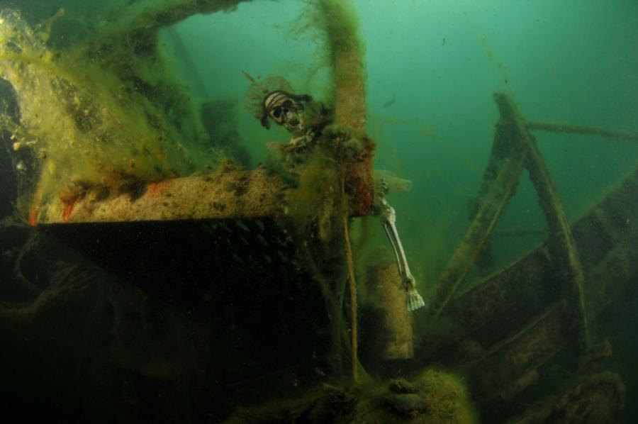 Haigh Quarry - Skel Sally