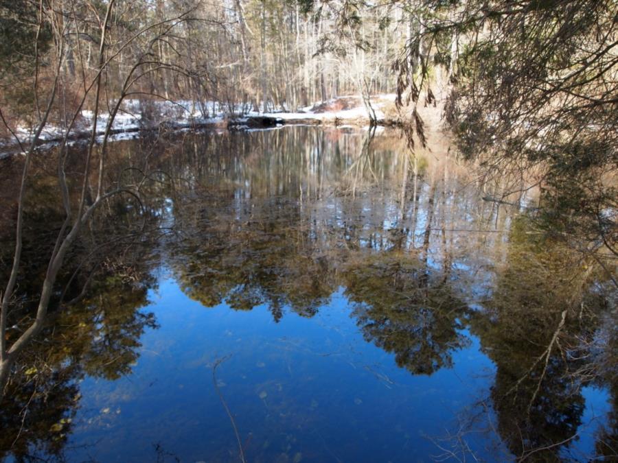 "Blue Hole ""The Devil's Bathtub"" - Blue Hole looking west toward the trail"