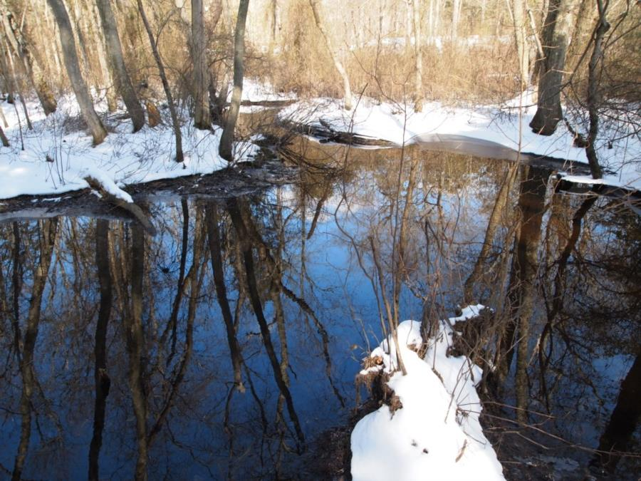 """Blue Hole """"The Devil's Bathtub"""" - Blue Hole outflow to the river"""