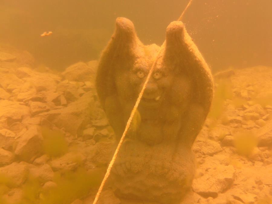 Natural Springs - Gargoyle Statue