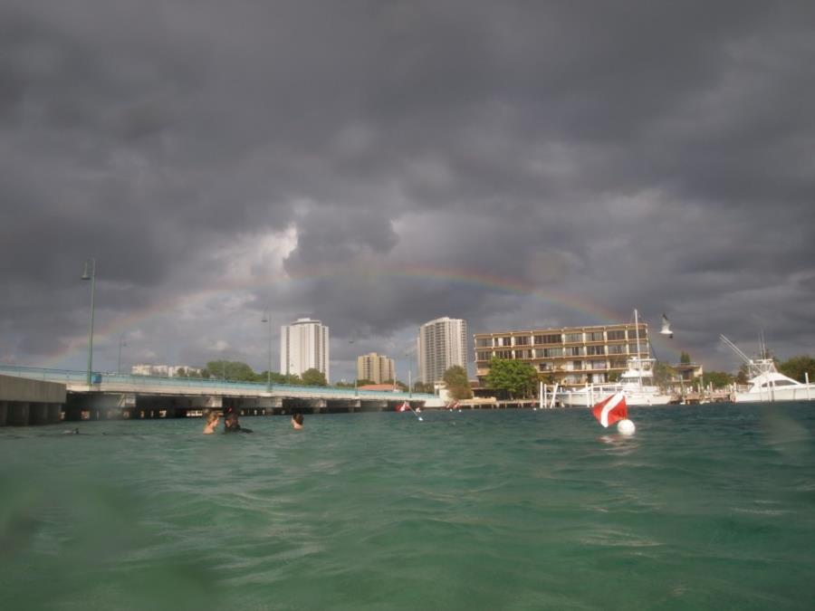 Blue Heron Bridge aka Phil Foster Park, BHB - Rainbow at end of dive, east span