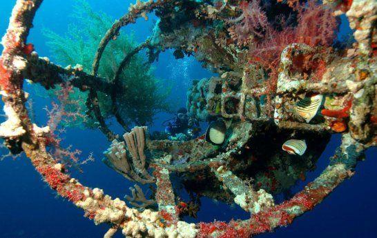 Aqaba - Cedar-Pride-Ship-Wreck