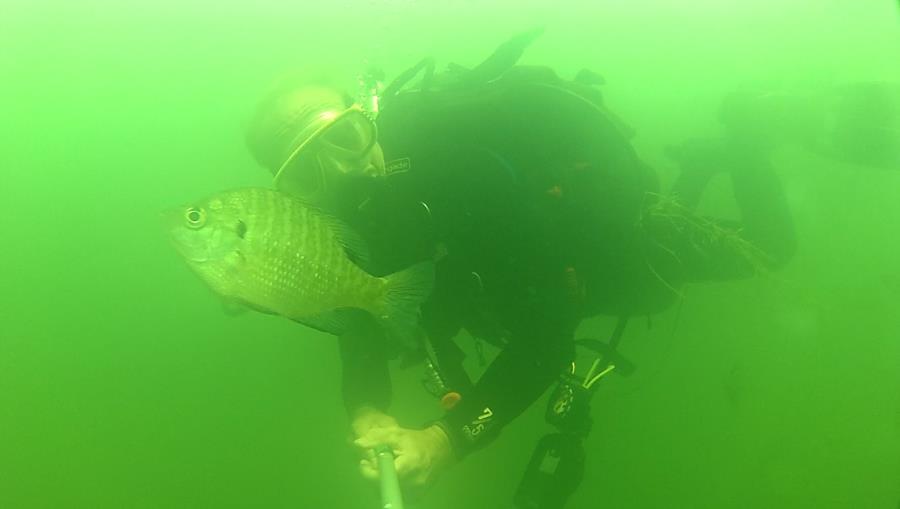 Wheeler Branch Lake - Fish hug