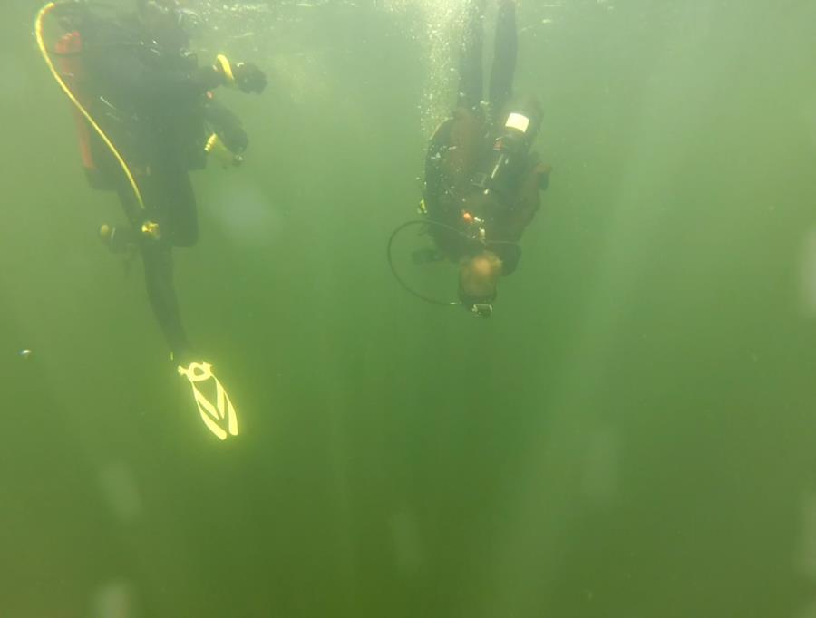 Wheeler Branch Lake - dive