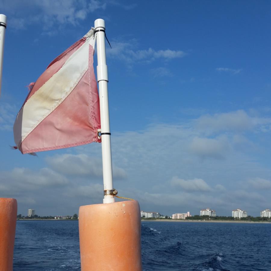 Governor's River Walk, Gilbert Sea, ShaSha Boekani - Calypso- going out to the dive site