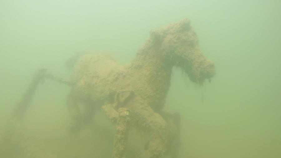 North Point Quarry - Spring horse