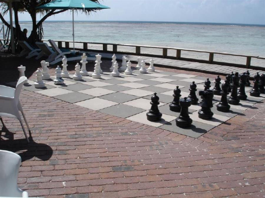 Heron Island - Chess in between Dives