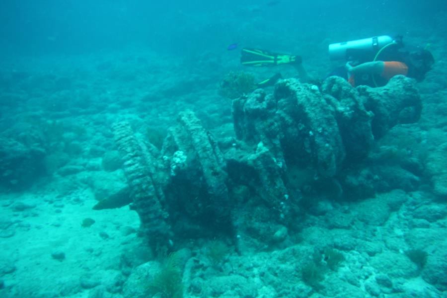 Eagle Ray Alley, Molasses Reef - GEARS FROM WRECK