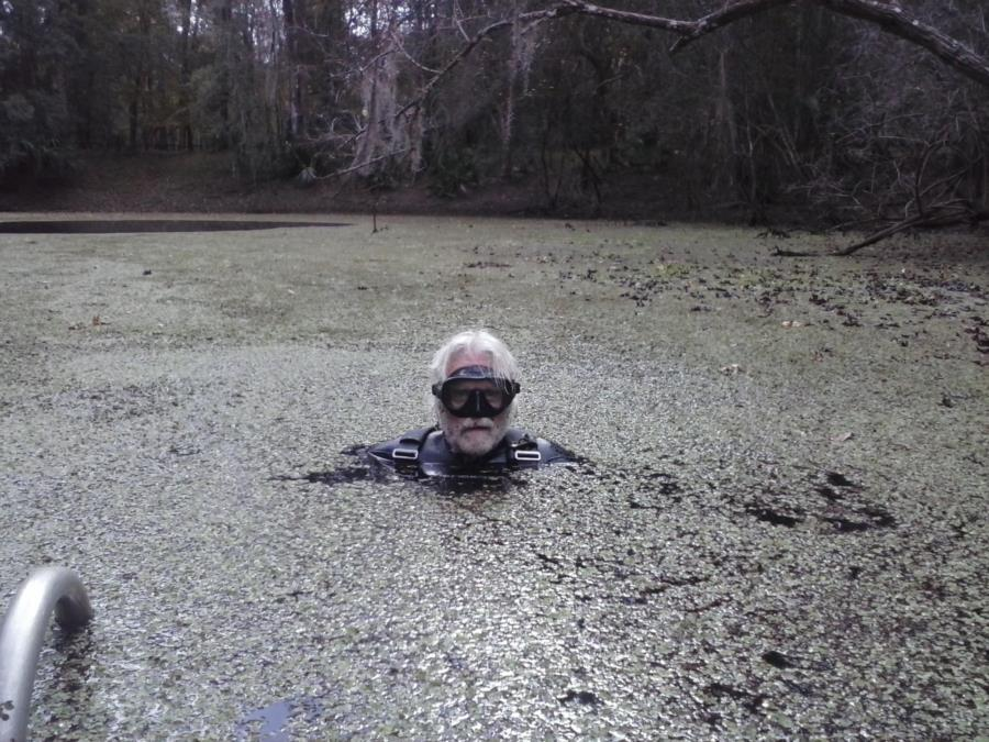 Catfish Hotel @ Manatee Springs State Park - Creature From the Black Lagoon(Duckweed Dave)