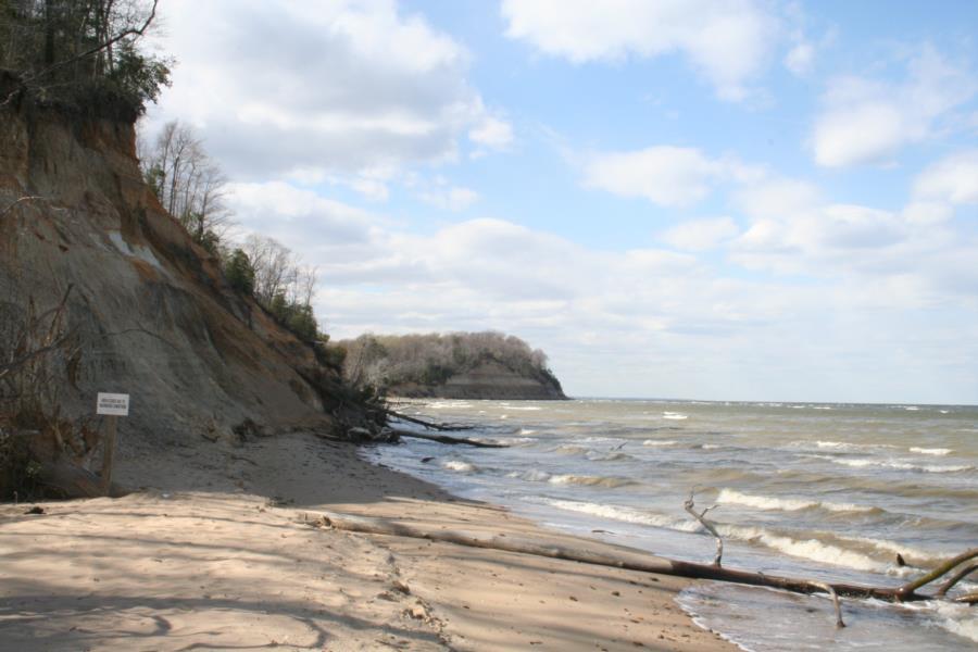 Calvert Cliffs - Calvert Cliffs from Shore Access