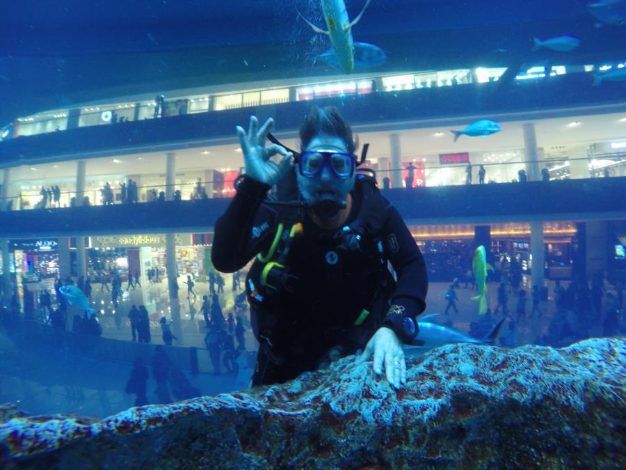 Dubai Aquarium - Dubai Aquarium