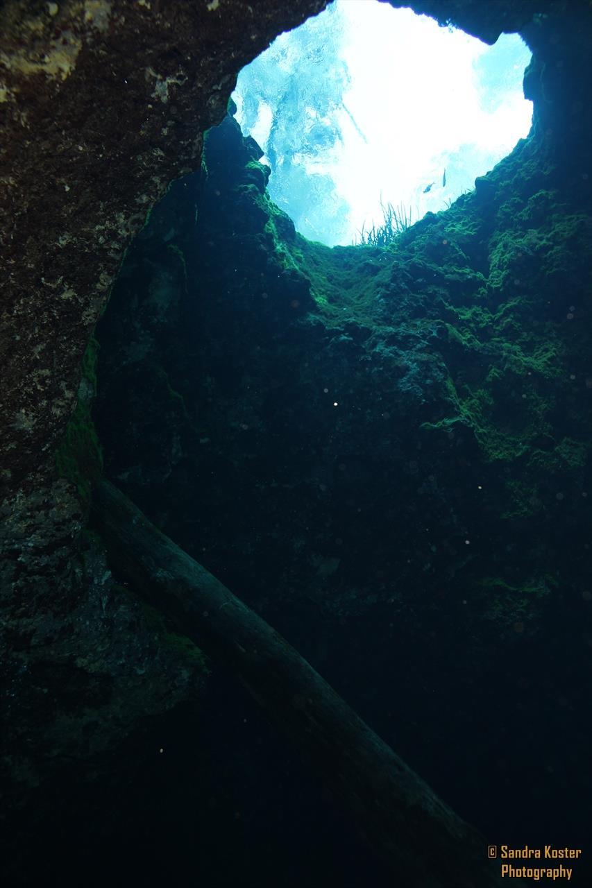 Jug Hole Spring, aka Blue Hole, Ichetucknee Park - Entrance to Cavern/Cave Zone