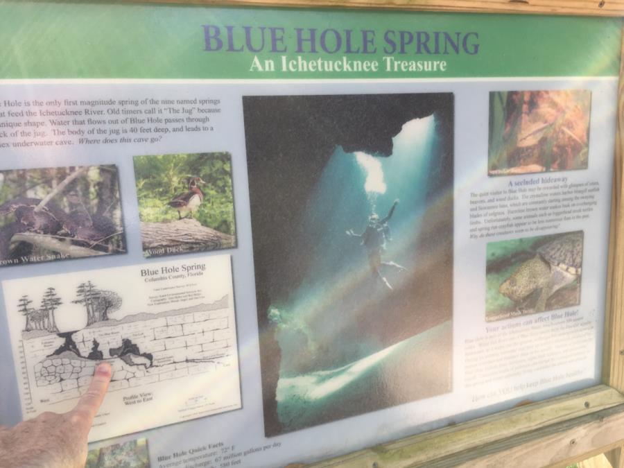 Jug Hole Spring, aka Blue Hole, Ichetucknee Park - Jug/Blue Hole Map
