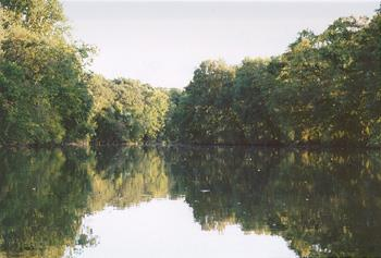 Swatara Creek - Swatara Creek
